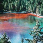 Lake Tovel turns red