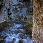 Canyon Rio Sass, Fondo