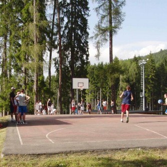 BASKET IN PINETA